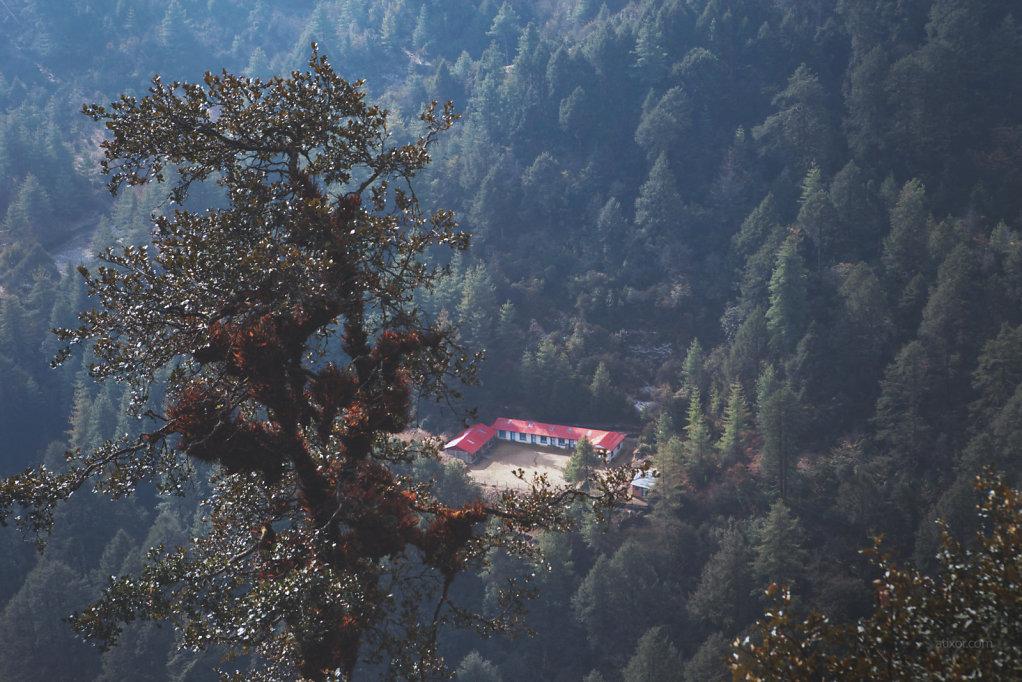 Nepal tree house